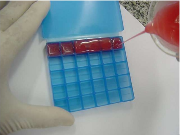 molde-embalagem-para-pastilhas