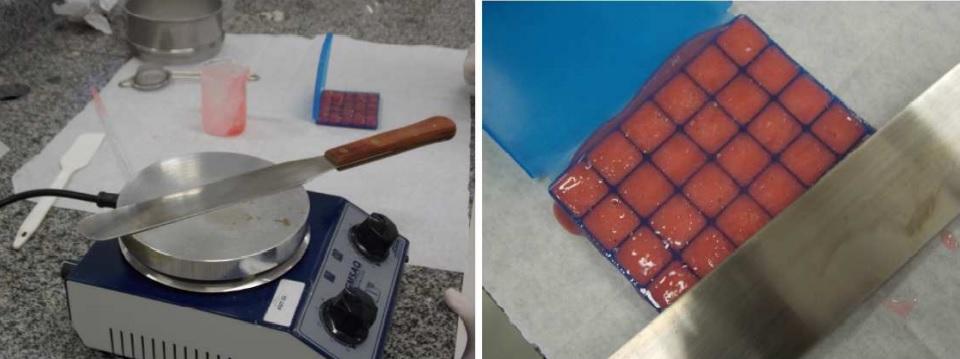 molde-embalagem-para-pastilhas7