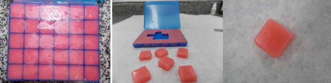 molde-embalagem-para-pastilhas8